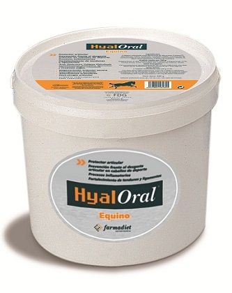 hyaloral equino